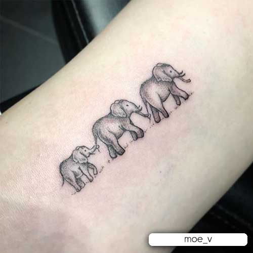 tatuaje familiar de elefante