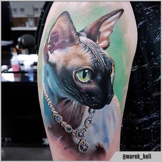 tatuaggi gatto