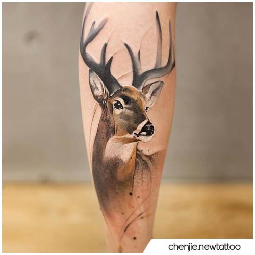realistico acquerello tatuaggio cervo