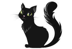 simbolismo gatto nero halloween