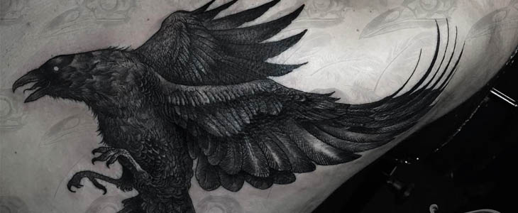 tattoo corvo blackwork schiena
