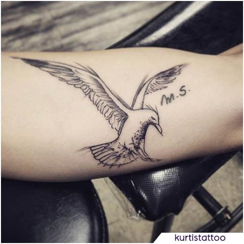 tatuaggio gabbiano sketch