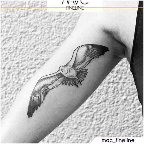 tatuaggio gabbiano braccio