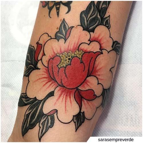 rossa petali chiari