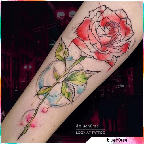 rosa acquerello
