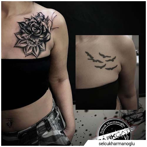 cover up gabbiani