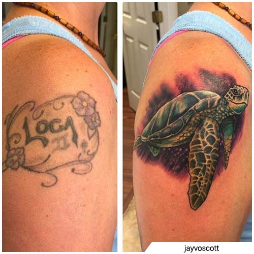 tartaruga loca