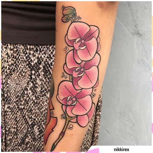 frijol rosa