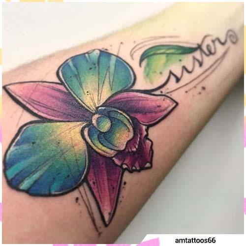 hermanas orquídeas escritas