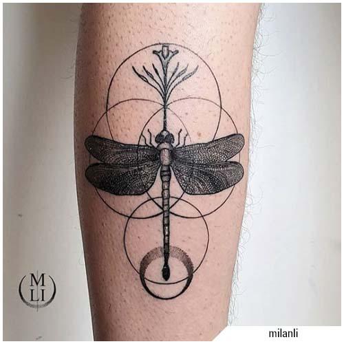 tatuaggio liellula blackwork cerchi