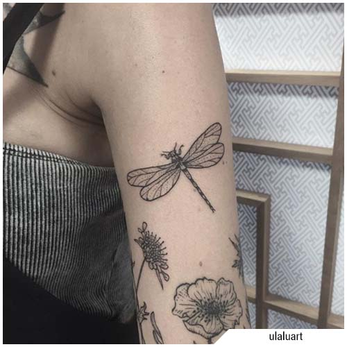 tatuaggio libellula blackwork